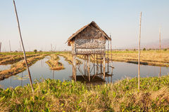 Rural House Inle Lake Stock Photos