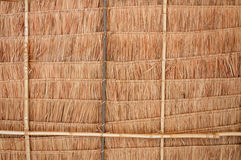 Rural house roof made of cogon grass,thatch roof background Stock Photography