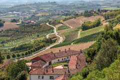 Rural house, vineyards and road in Italy. Royalty Free Stock Images