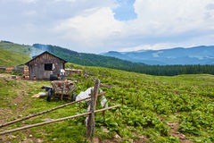 Rural household in Carpathians Royalty Free Stock Photo