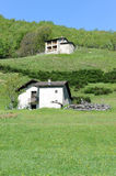 Rural houses on a field Stock Photography