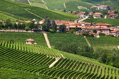 Rural houses and green vineyards of Piedmont, Italy. Stock Photo