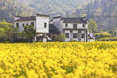 Rural houses in Wuyuan, Jiangxi Province, China. Royalty Free Stock Images