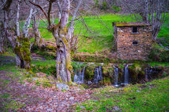 Rural housing with  trees and waterfall Stock Photo