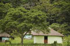 Rural hut. In South Africa with coastal forest behind Stock Photo