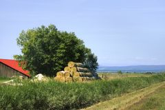 Rural idyllic landscape. Farm with green tree, hay bales and red roof of barn with fields and mountains behind. Hungarian summer. Landscape with barn. Blue sky stock photography