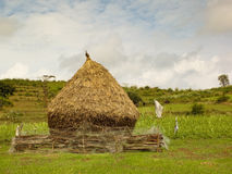 Rural india Royalty Free Stock Photography