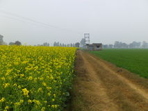 Rural India Royalty Free Stock Images