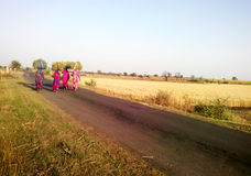 Rural Indian grass reaper women returning home. In rural India few grass reaper women carrying grass on their heads and returning home in the late evening Stock Photography