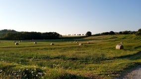 Rural inspirational landscape. Fantastic summer rural inspirational landscape in Marche, an italian region stock photo