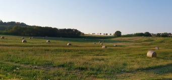 Rural inspirational landscape. Fantastic summer rural inspirational landscape in Marche, an italian region royalty free stock images