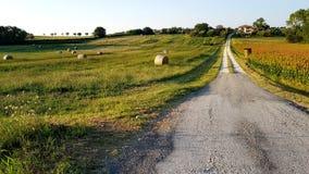 Rural inspirational landscape. Fantastic summer rural inspirational landscape in Marche, an italian region stock photography