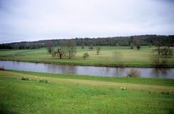 Rural Irish Countryside. The rolling green fields of the Irish countryside. Kilkenny, Ireland royalty free stock photo