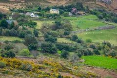 Rural irish countryside Royalty Free Stock Photos