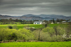 Rural irish countryside Stock Images