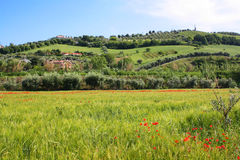 Rural Italian landscape Royalty Free Stock Photos