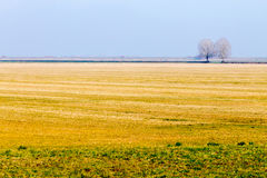 Rural Italian landscape from Po river lagoon. Royalty Free Stock Photos