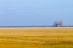 Rural Italian landscape from Po river lagoon. Royalty Free Stock Image