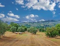Rural Italian landscape Royalty Free Stock Image