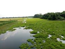 Rural junto com o rio foto de stock