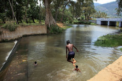 Rural kids dive in a stream Stock Images