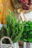 Rural Kitchen Interior White Plank Wood Wall Hanging Cutting Boards Linen Towel Utensils String of Dried Peppers Fresh Herbs Stock Images