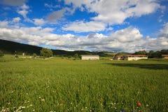 Rural land with farms Stock Photos