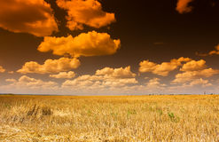 Rural landsape. With troubled sky Stock Photo