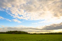 Rural Landscape. Field and sky just before the sun going down Royalty Free Stock Photo
