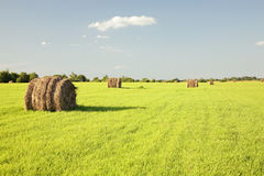 Rural landscape. Haystacks on a green meadow in solar summer day royalty free stock photos