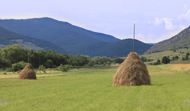 Rural landscape. With two hayricks in a field.Location:Transylvania,Romania Stock Image