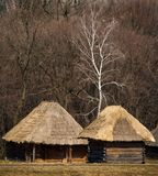 Rural landscape. A few wooden houses with thatched roof, standing on the edge of the forest royalty free stock photo