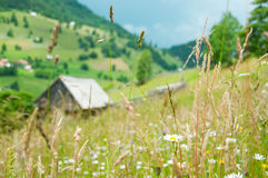 Rural landscape. With small house in the background Stock Photos