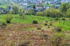 The Rural landscape. Stock Image