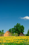 Rural Landscape. Two houses on a yellow field Stock Photos