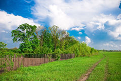 Rural landscape. With garden, track, fence, meadow and trees Stock Photo