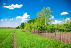 Rural landscape. With garden, track, fence, meadow and trees Stock Photography