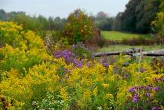 Free Rural Landscape Stock Images - 1476864