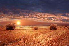 Rural landscape. Sundown on farm field Stock Photo
