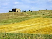 Rural landscape. Summer rural landscape, Italy stock photography