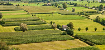 Rural landscape. Royalty Free Stock Photo