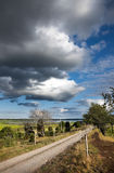Rural landscape. In summer evening with cloudy sky Royalty Free Stock Photography