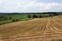 Rural landscape #2 Stock Photo