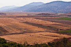 Rural landscape . Agricultural landscape. Lower  Gallil. North of Israel Royalty Free Stock Photos