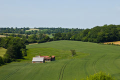 Rural landscape. French farm on the middle of the crops of green wheat Stock Photo