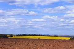 Rural landscape Royalty Free Stock Images