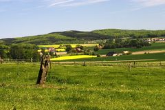 Rural landscape. With fresh meadows and blooming rape fields Royalty Free Stock Photography