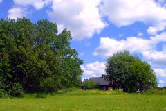 Rural landscape. The blue sky white clouds and a green grass royalty free stock image