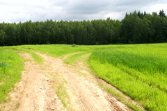 Rural landscape. With green grass, road junction and forest Stock Images