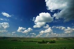 Rural landscape stock images